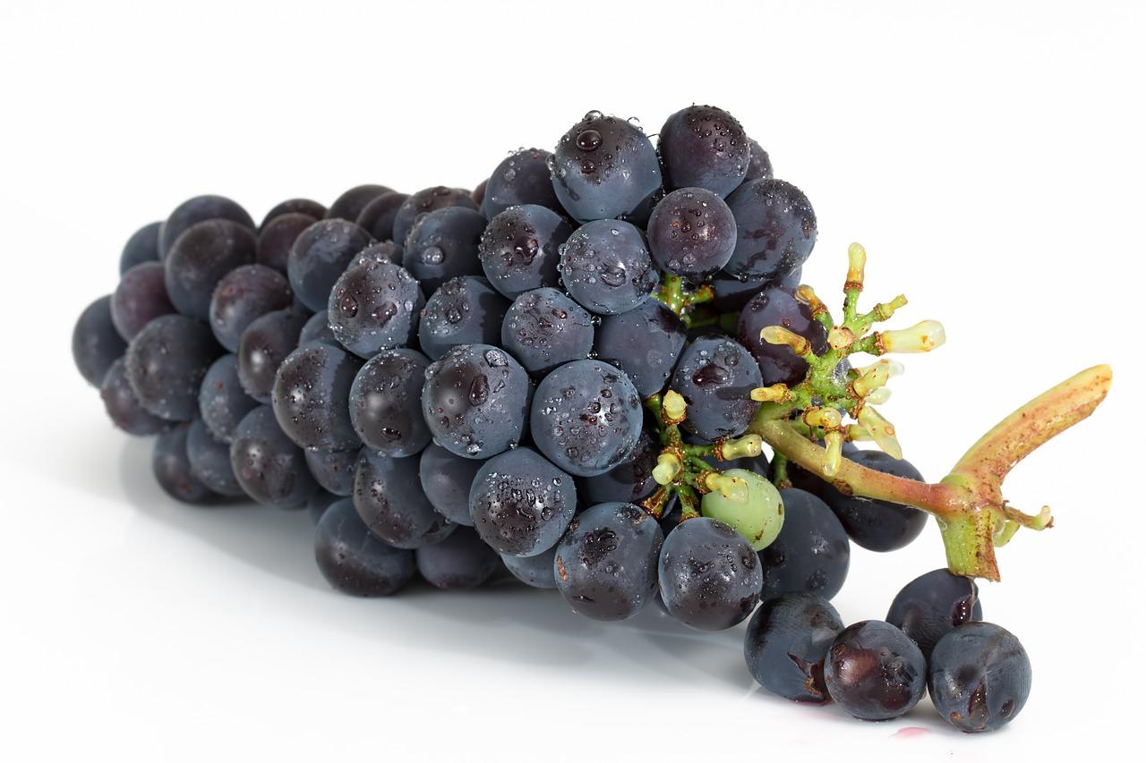 grapes-2032838_1280
